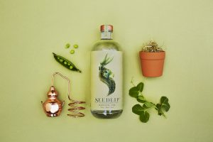 Diageo's investment in the world's first distilled non-alcoholic spirit, Seedlip, suggests that the consumption of alcohol-free drinks is on the rise